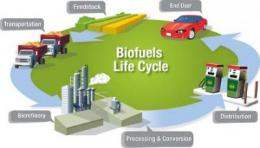 A wiki for the biofuels research community