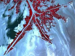 Gulf oil spill could widen, worsen 'dead zone'