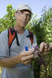 Budding research links climate change and earlier flowering plants