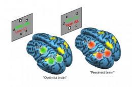 Caltech: Gain and loss in optimistic versus pessimistic brains