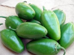 Chile Pepper Institute introduces 'NuMex Jalmundo'