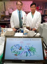 Chromosomal break gives scientists a break in finding new puberty gene
