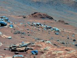 Colonization of Mars might be microbes away