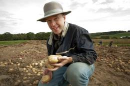 Cornell releases two new potato varieties for chips