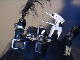 Dancing robot swan triggers emotions