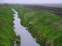 Dead zones in Gulf caused, in part, by farm drainage