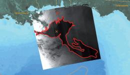 'Deepwater Horizon' disaster hit bluefish tuna hard