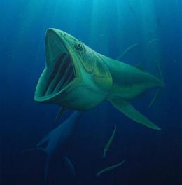 Dynasty of plankton-eating giants from Age of Dinosaurs revealed in new study