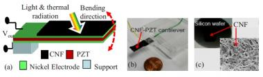 Cantilever bends repeatedly under light exposure for continuous energy generation