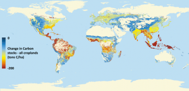 Expanding croplands chipping away at world's carbon stocks