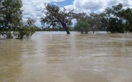 Flood waters innundate a property in southwest Queensland