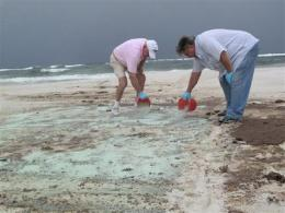 Florida tests inventors' sand-cleaning ideas (AP)
