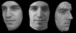 Genes responsible for ability to recognize faces