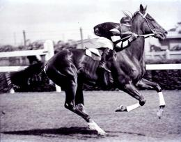 Hair analysis proves it: Legendary racehorse Phar Lap died of arsenic poisoning in 1932