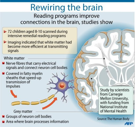 intelligence vs brain size One of the most defining life changing moments of my life came in high school, when i under-performed on a grade 11 chemistry test suffering from sour grapes, i ranted about the chemistry test being a poor measure of intelligence.