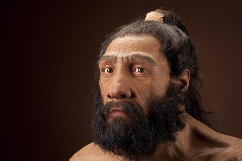 genetic testing shows neanderthals less diverse than