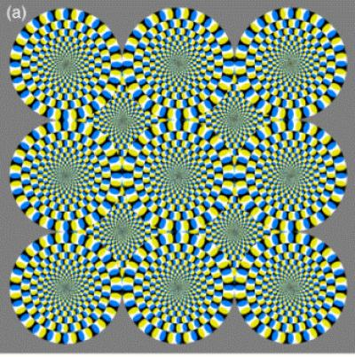 ... optical illusion as rotating, but the image is static. Credit: © A