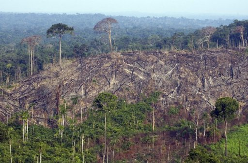 an analysis of brazilian rainforest Dna sequencing shows divergent genomes in malaria vectors of brazilian rainforest date: november 2 analysis of the genetic diversity among these individuals.