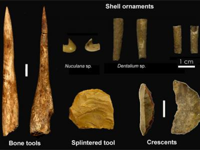 Radiocarbon dating of the iceman otzi with accelerator mass spectrometry 6