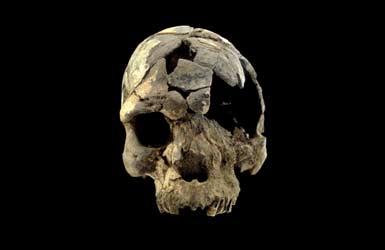 first homo sapiens found - photo #3