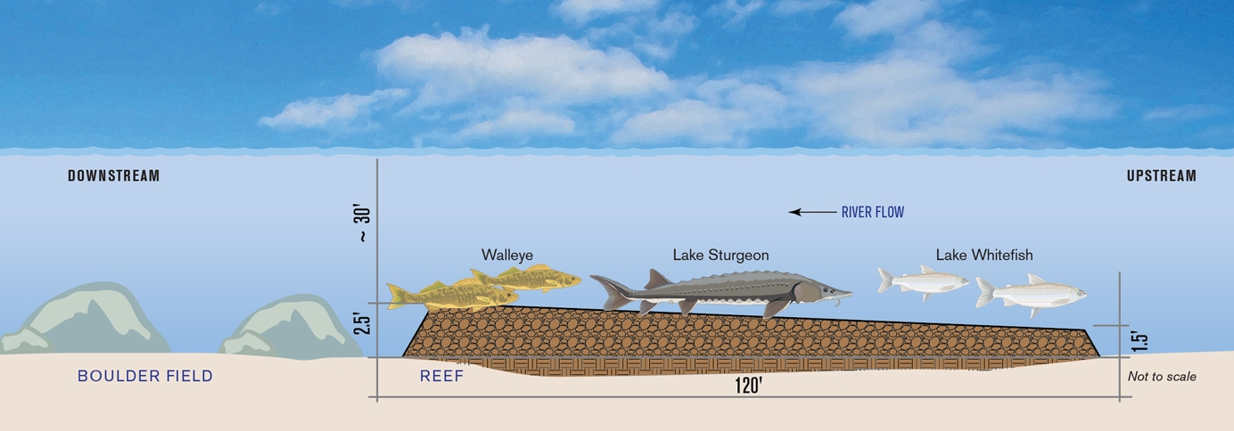 Construction of new rock spawning reefs will help great for Ice fishing lake st clair