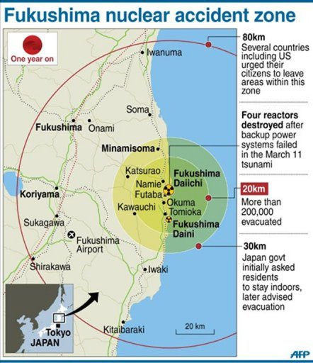2012 03 Japan Pm Individual Blame Fukushima