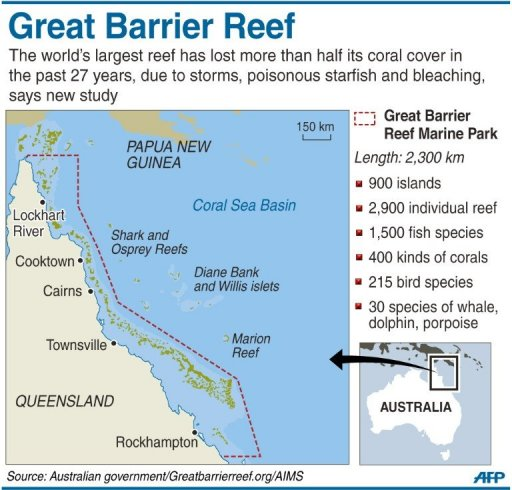 term papers on the great barrier reef The great barrier reef marine authority reef guardian schools programme is about supporting schools whose aim is to language barrier term paper barrier is.