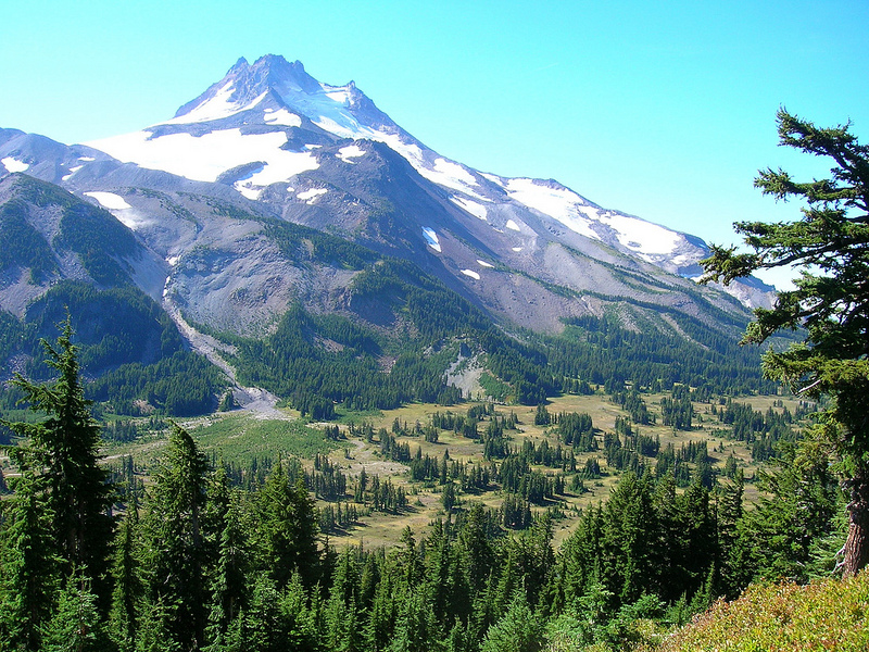 an analysis of deforestation of the pacific northwest Deforestation of the pacific northwest one of the most controversial areas associated with the global problem of deforestation is the pacific northwest of the us the .