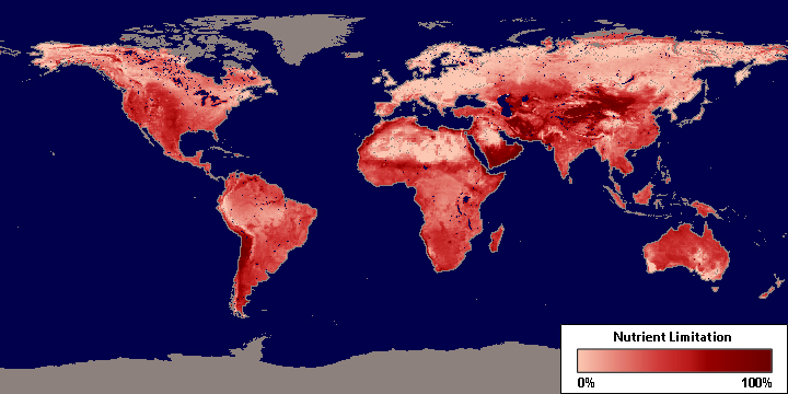 NASA maps how soil nutrients affect plant productivity