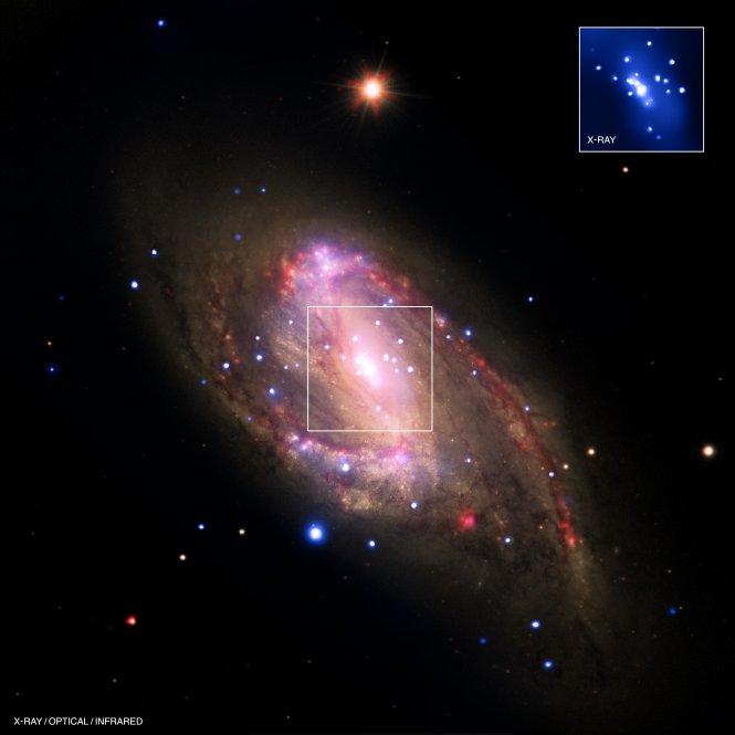 Hidden black hole: Spiral galaxy NGC 3627