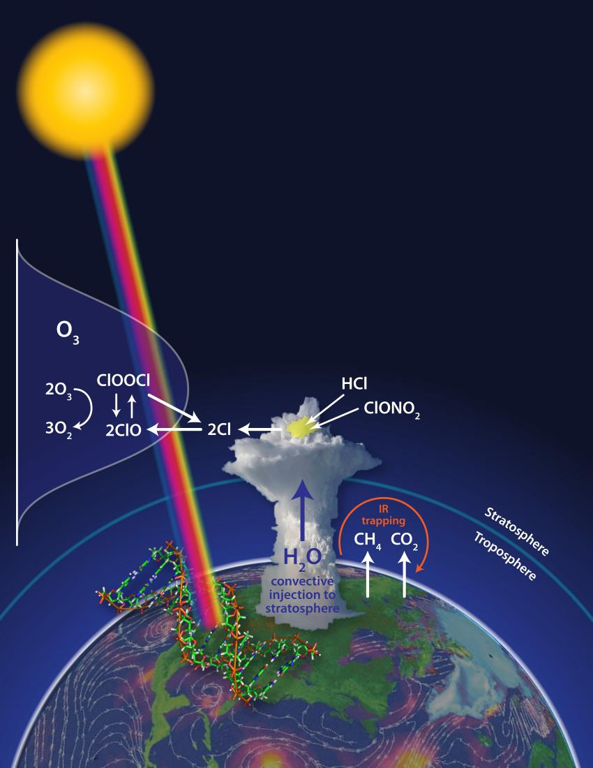 reaction paper on ozone layer The reactions of ozone with organic compounds  cellulose, lignin, paper, and other wood products  the reaction of ozone with ammonia.