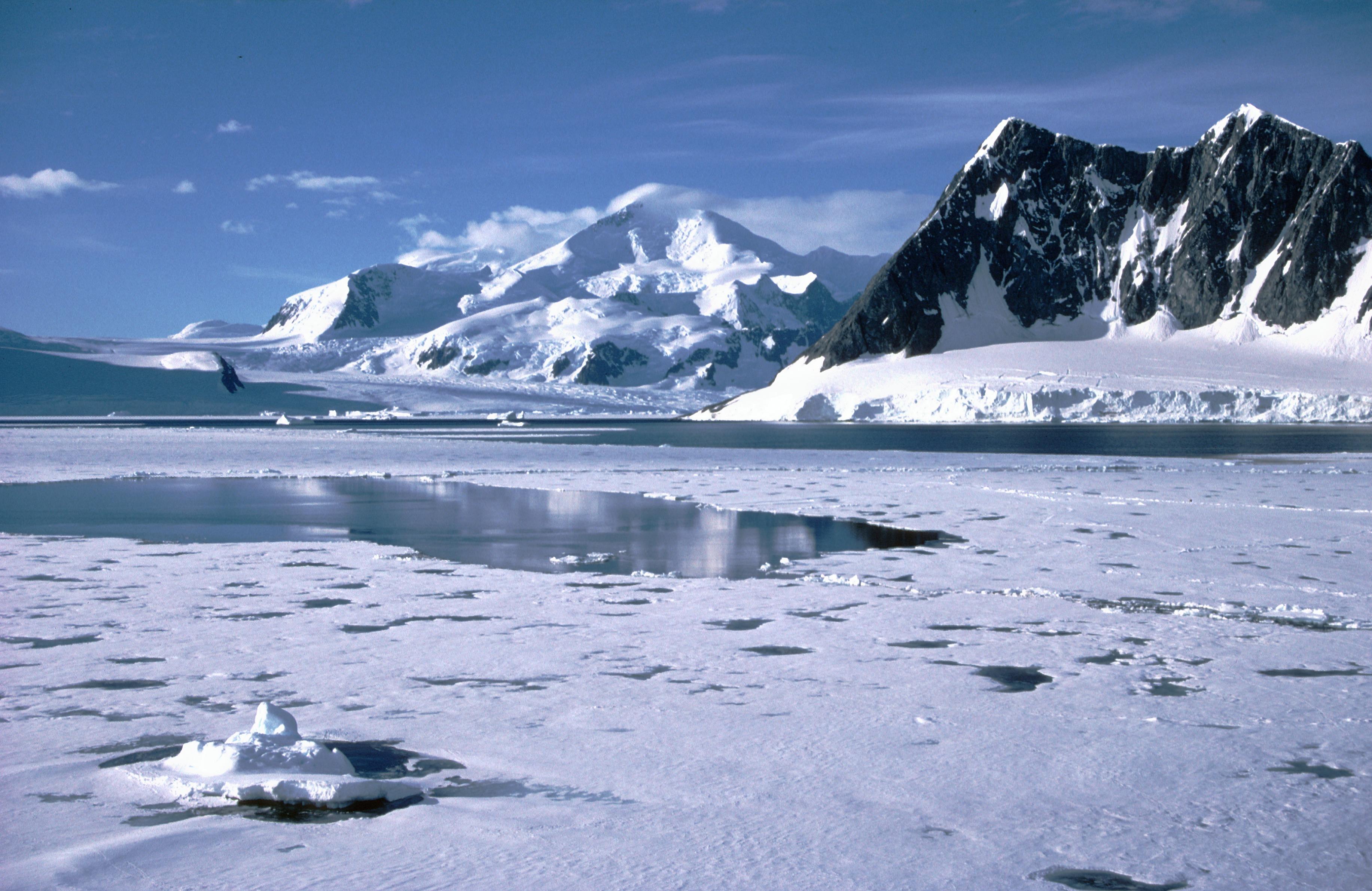 ... sea ice cov... Effects Of Global Warming Nasa