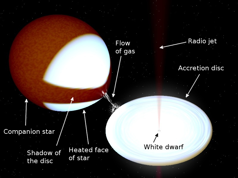diagram of white dwarf star - photo #26