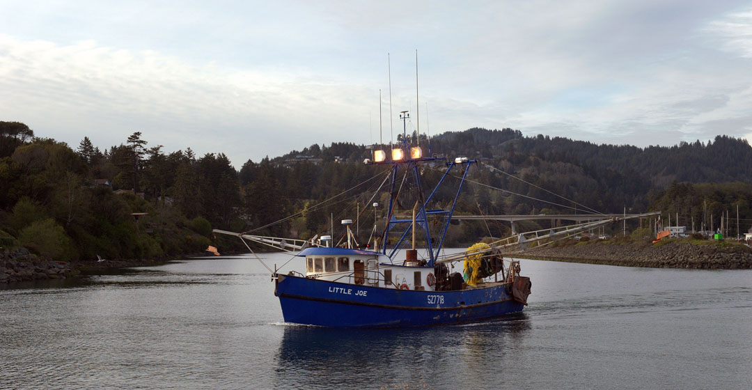 New fishery management program on west coast gives for Fishing brookings oregon