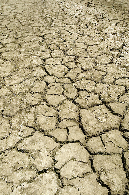 Irrigation wastewater can help salvage damaged soils for The soil 02joy