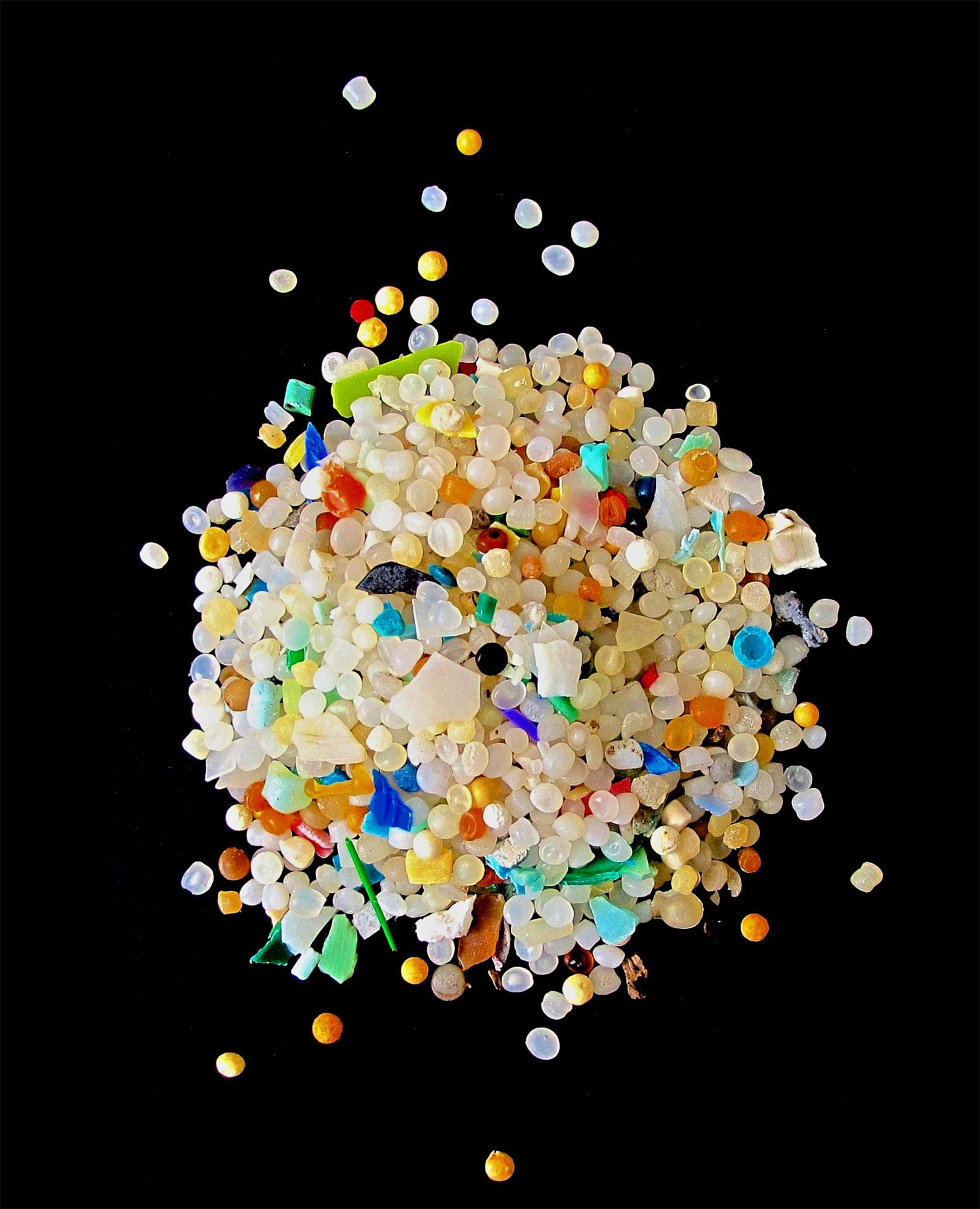Microplastics make marine worms sick