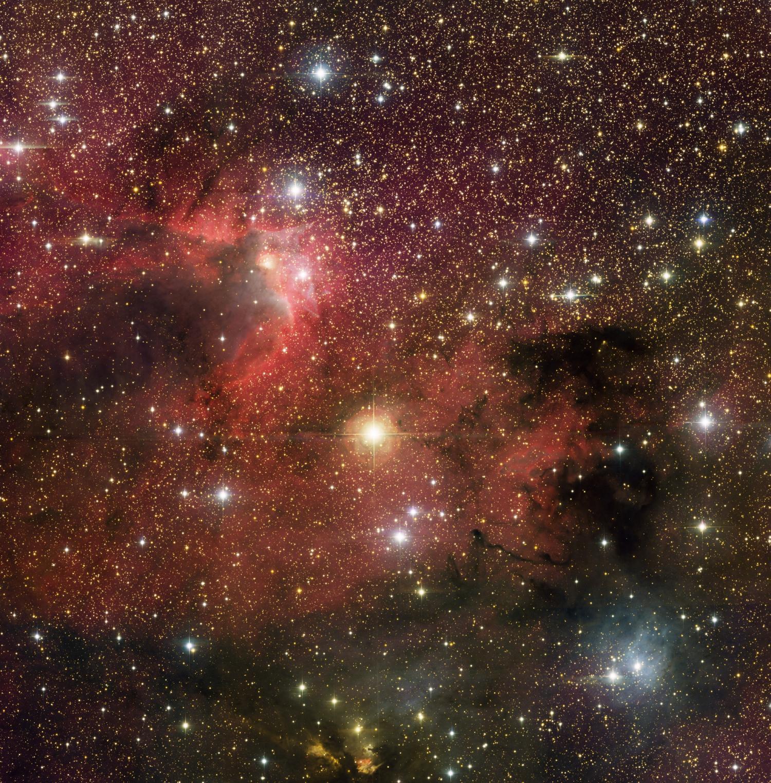 Star birth in Cepheus
