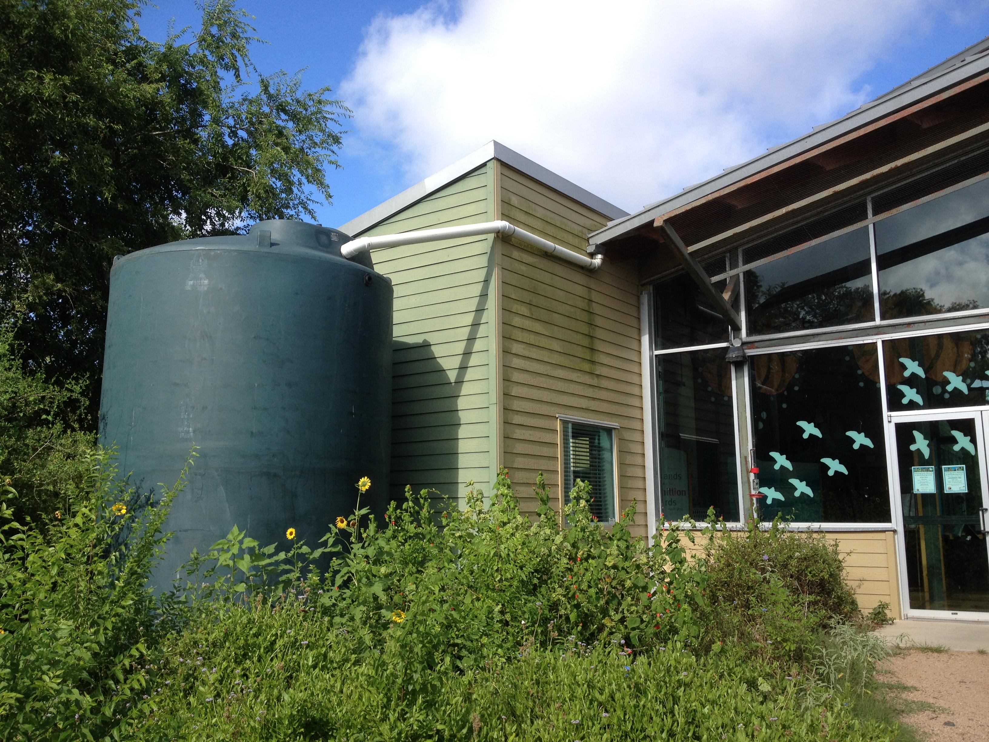 Rainwater Harvesting Soaking In As Way To Conserve Texas