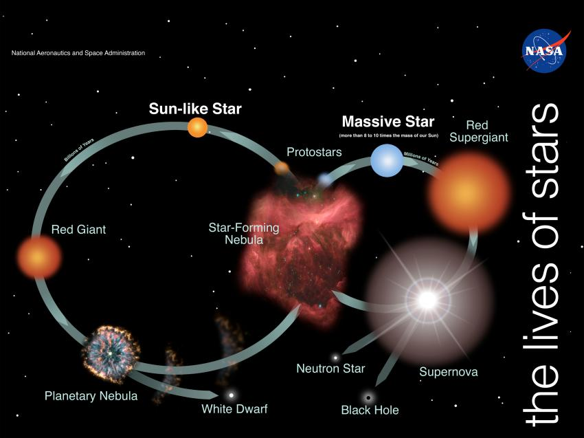 What is the Life Cycle Of The Sun?