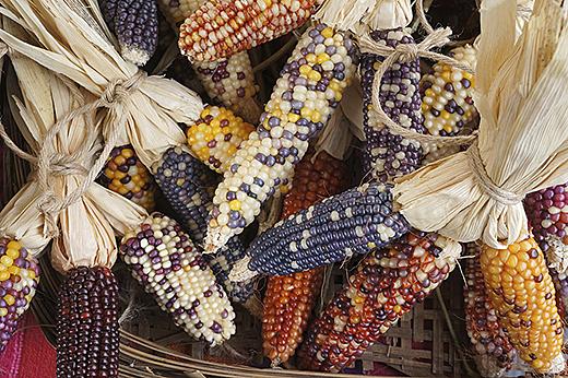 thanksgiving staple foods
