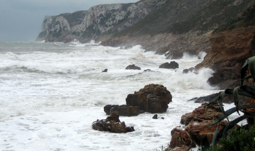A new database developed by the University of Cantabria (Spain) provides data on sea level variation due to atmospheric changes in the south of Europe between 1948 and 2009. Over the last two decades sea levels have increased in the Mediterranean bas...
