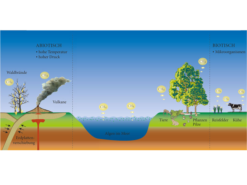 What Is The Natural Greenhouse Gas Effect
