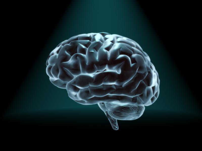 【心理学】トレーニング「直後」の日誌があなたの潜在意識を変える!