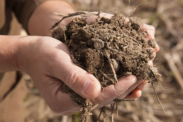 Reducing fertilizer use with a more accurate soil test for What does soil