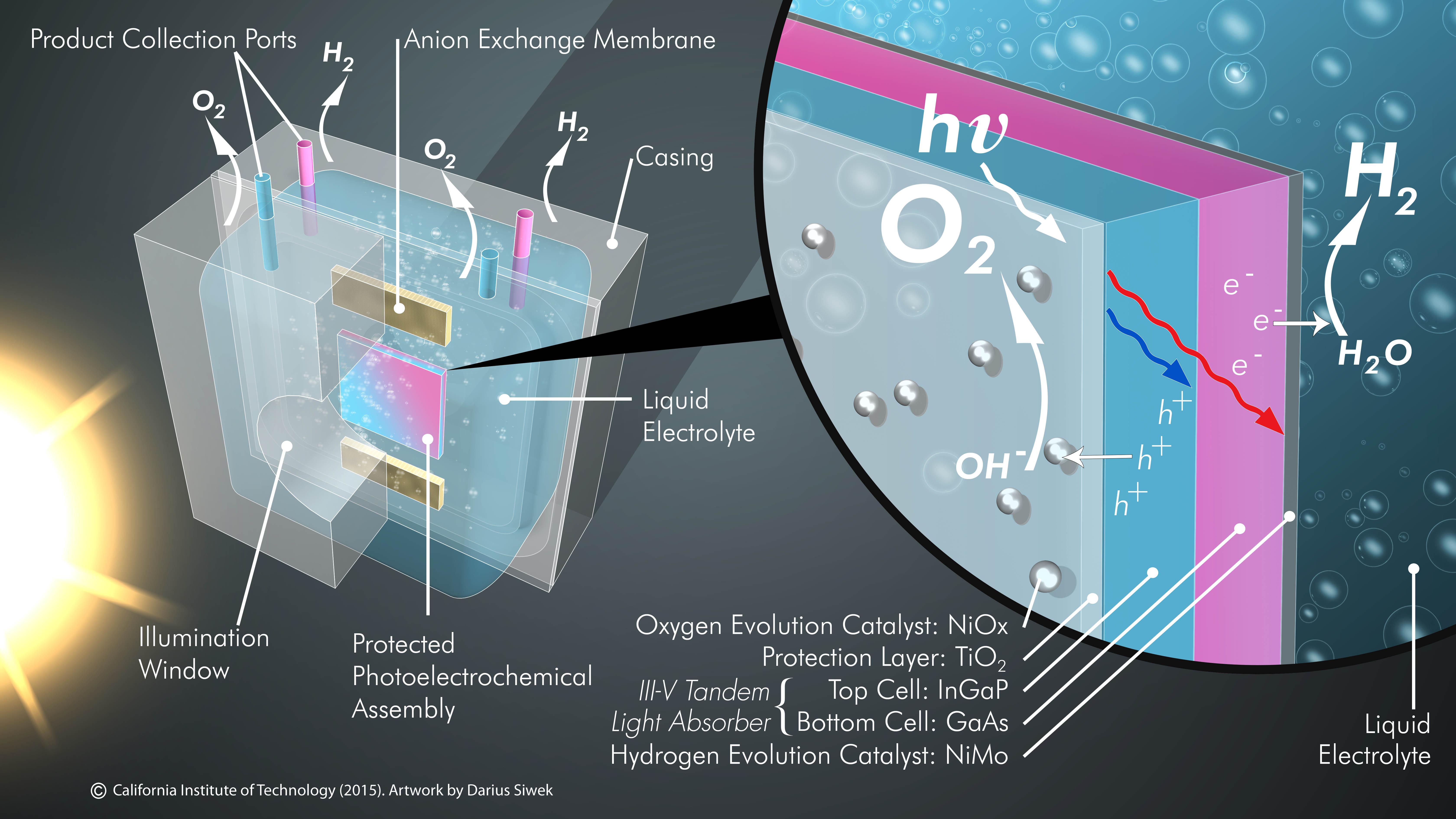 Artificial Leaf Harnesses Sunlight For Efficient Fuel