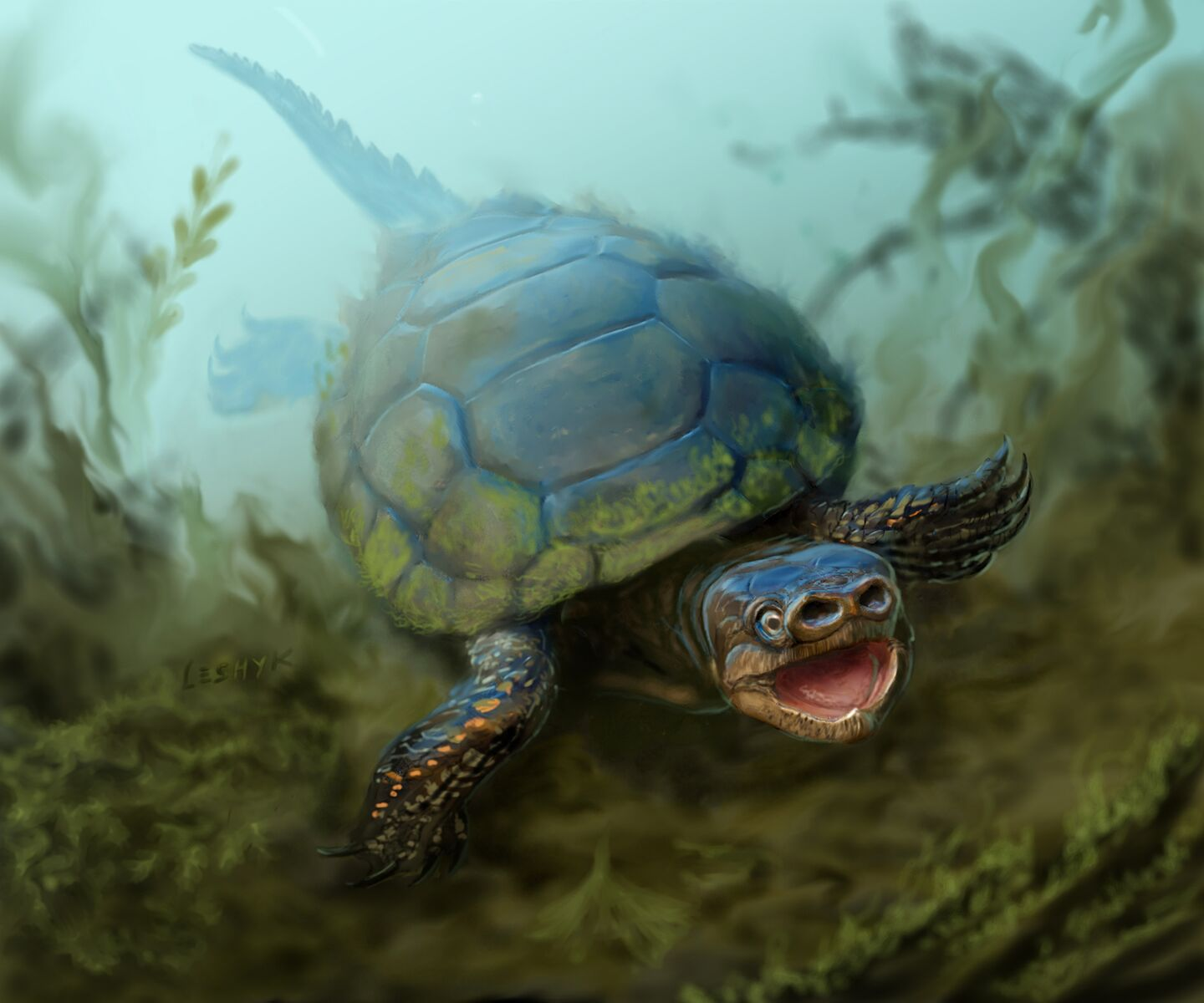 76-million-year-old Extinct Species Of Pig-snouted Turtle