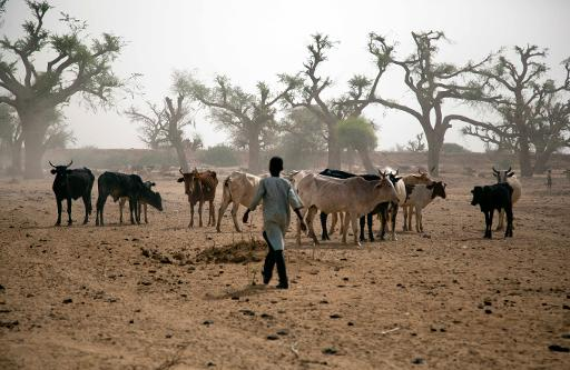 How far do you agree that the conflict in Darfur is the 1st climate change war?