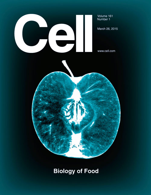 cell biology research articles A special collection of recent exciting articles selected by jcb board member richard youle combining cell biology and biochemical submit your research.