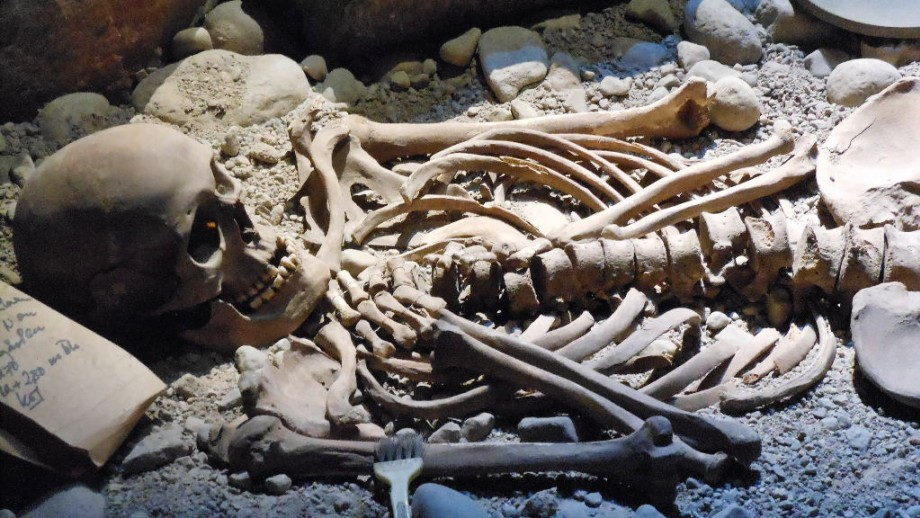 The Identification of the Human Skeleton: A Medico
