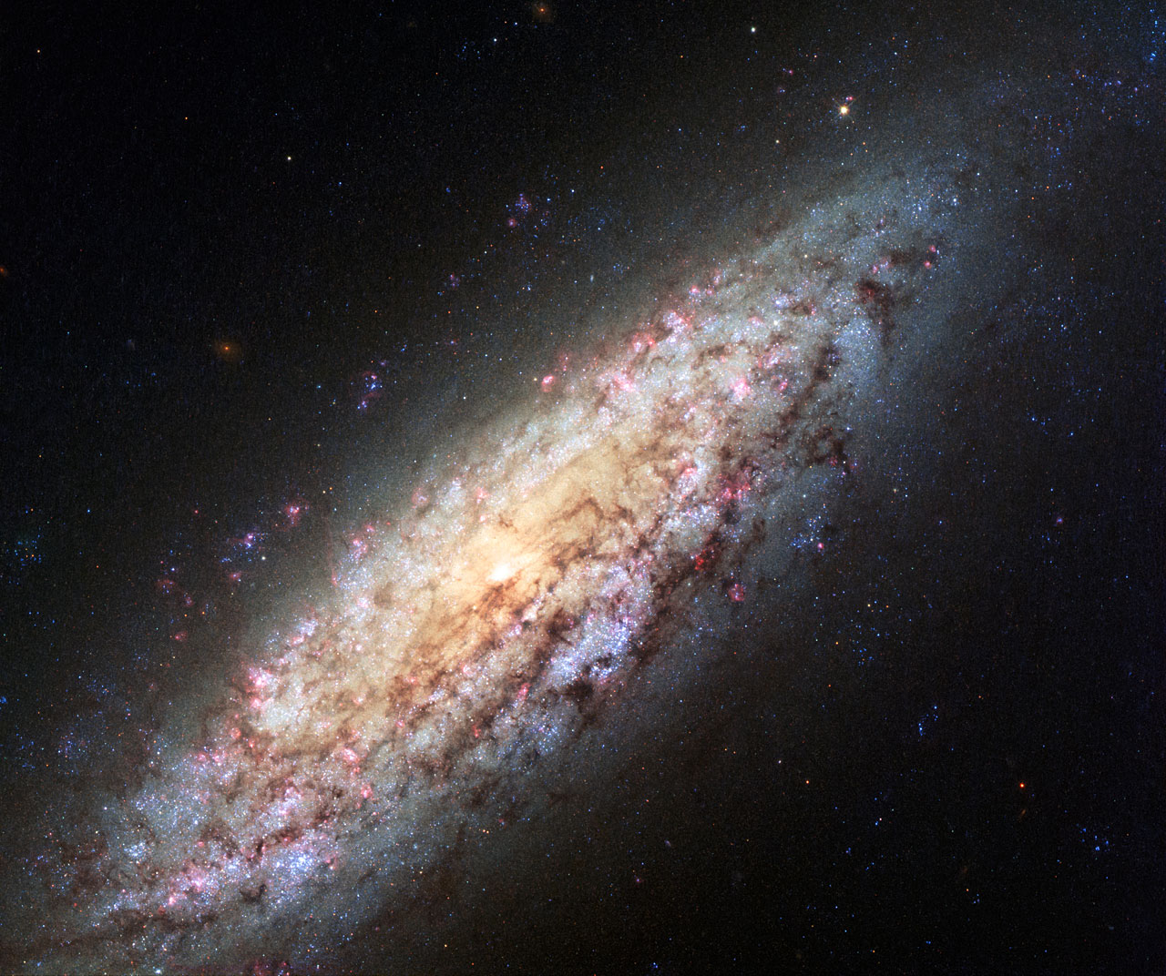 Lost in space: New Hubble image of galaxy NGC 6503